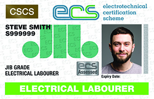 Electrical Labourer in Smart Sisters